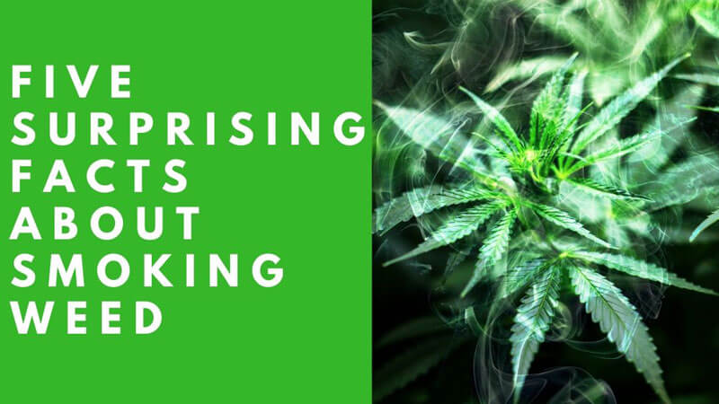 Surprising Facts About Smoking Weed