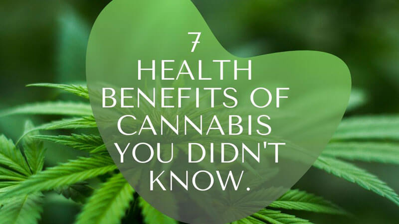 Health Benefits of Cannabis You Didn't Know