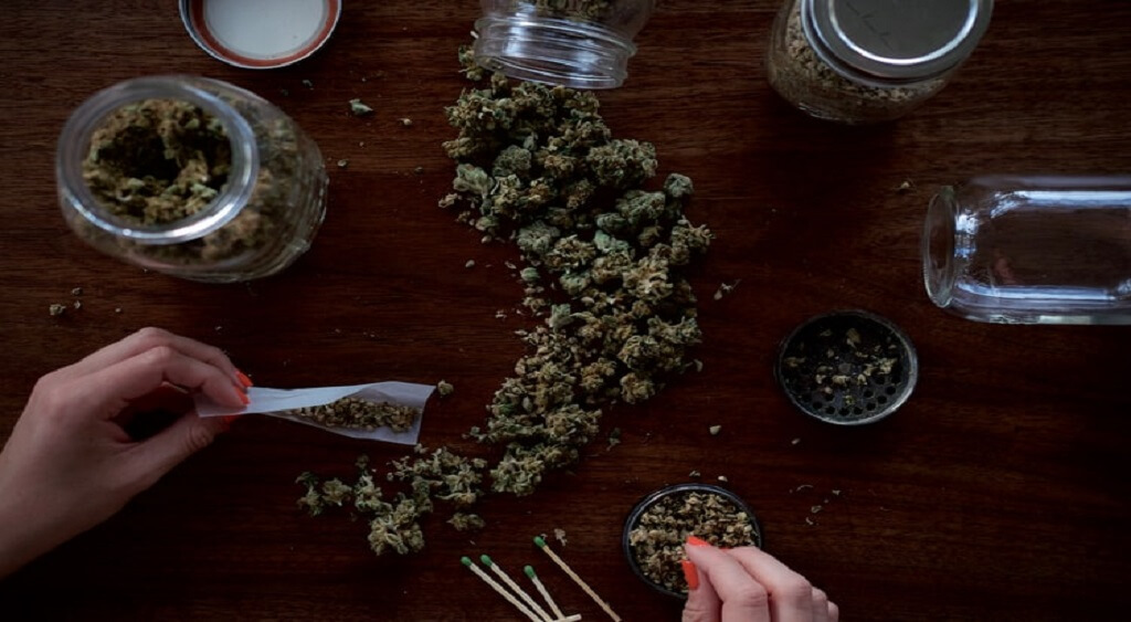 How to Find a Reliable Cannabis Dealer Online? | Low Price Bud