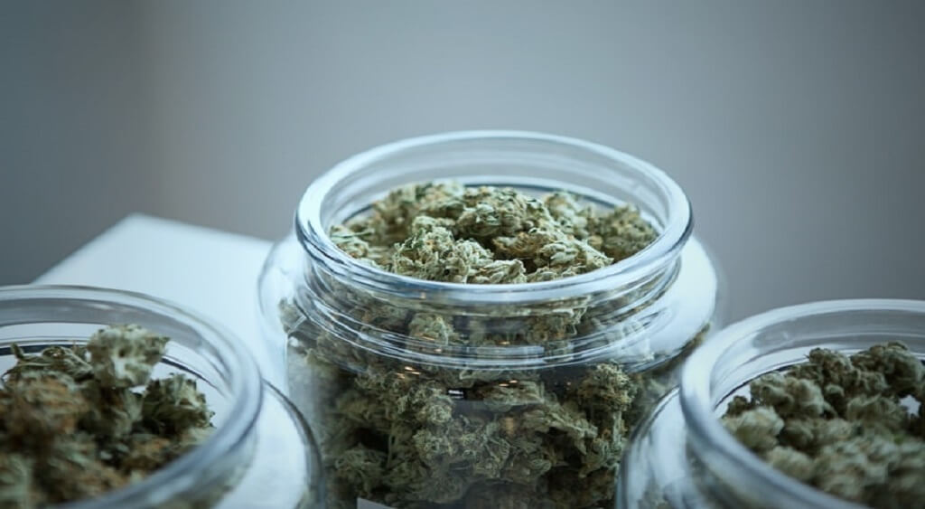 How to Keep Your Weed Fresh and Potent