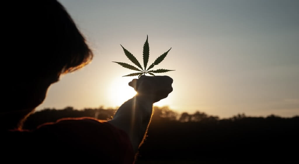medical marijuana for depression