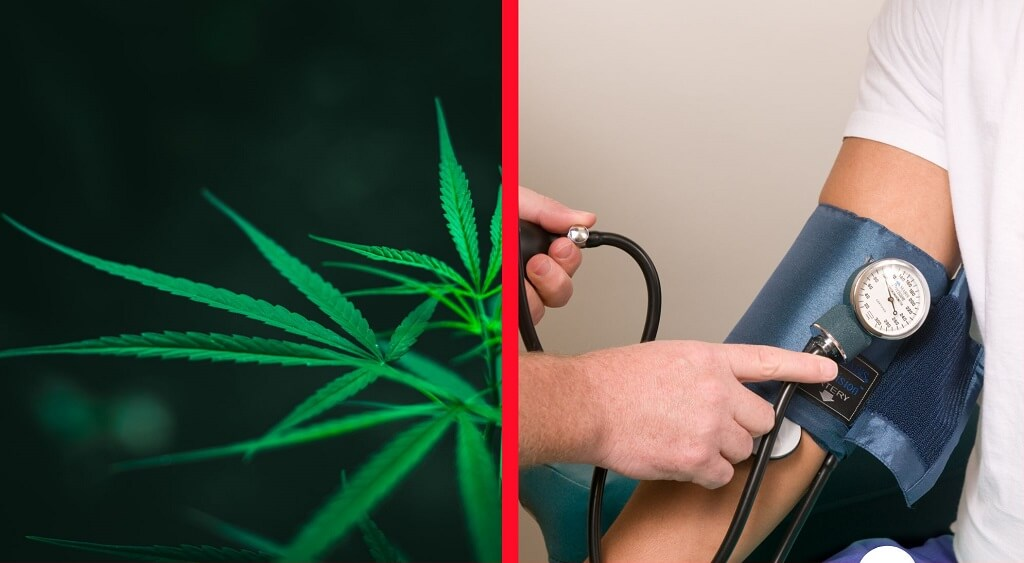 Does Cannabis Help with High Blood Pressure?