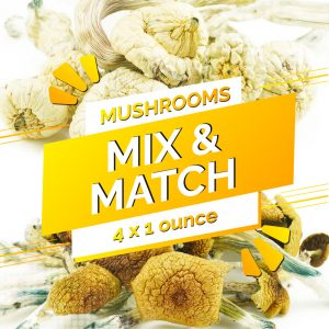 Buy Build Your Own Mushrooms Quarter Pound online Canada