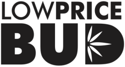 Buy 2 OZ BLACKBERRY BUBBA – PURPLE BUBBA & BLACKBERRY KUSH online Canada