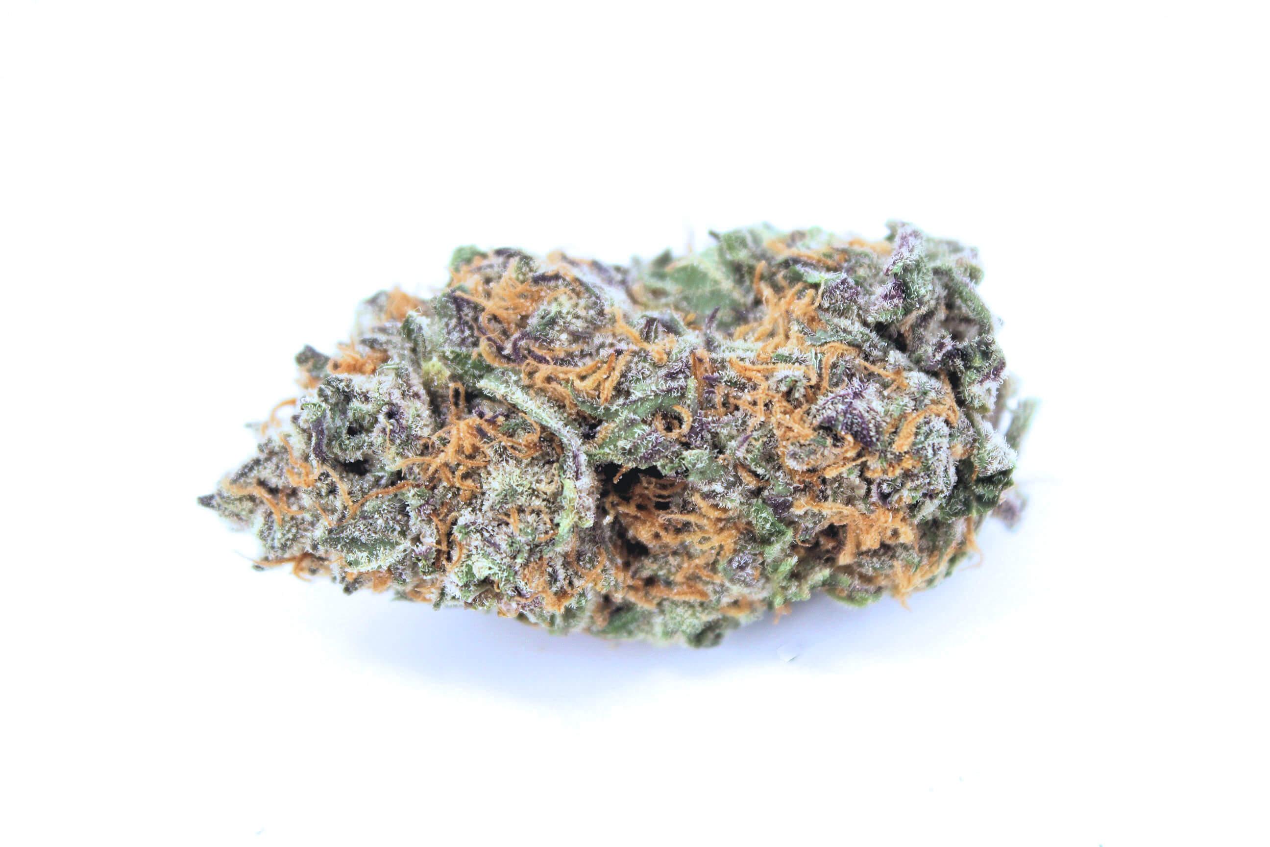 Cherry Afghan (AAA) RARE! - Low Price Bud