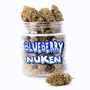 BLUEBERRY NUKEN (AAA)