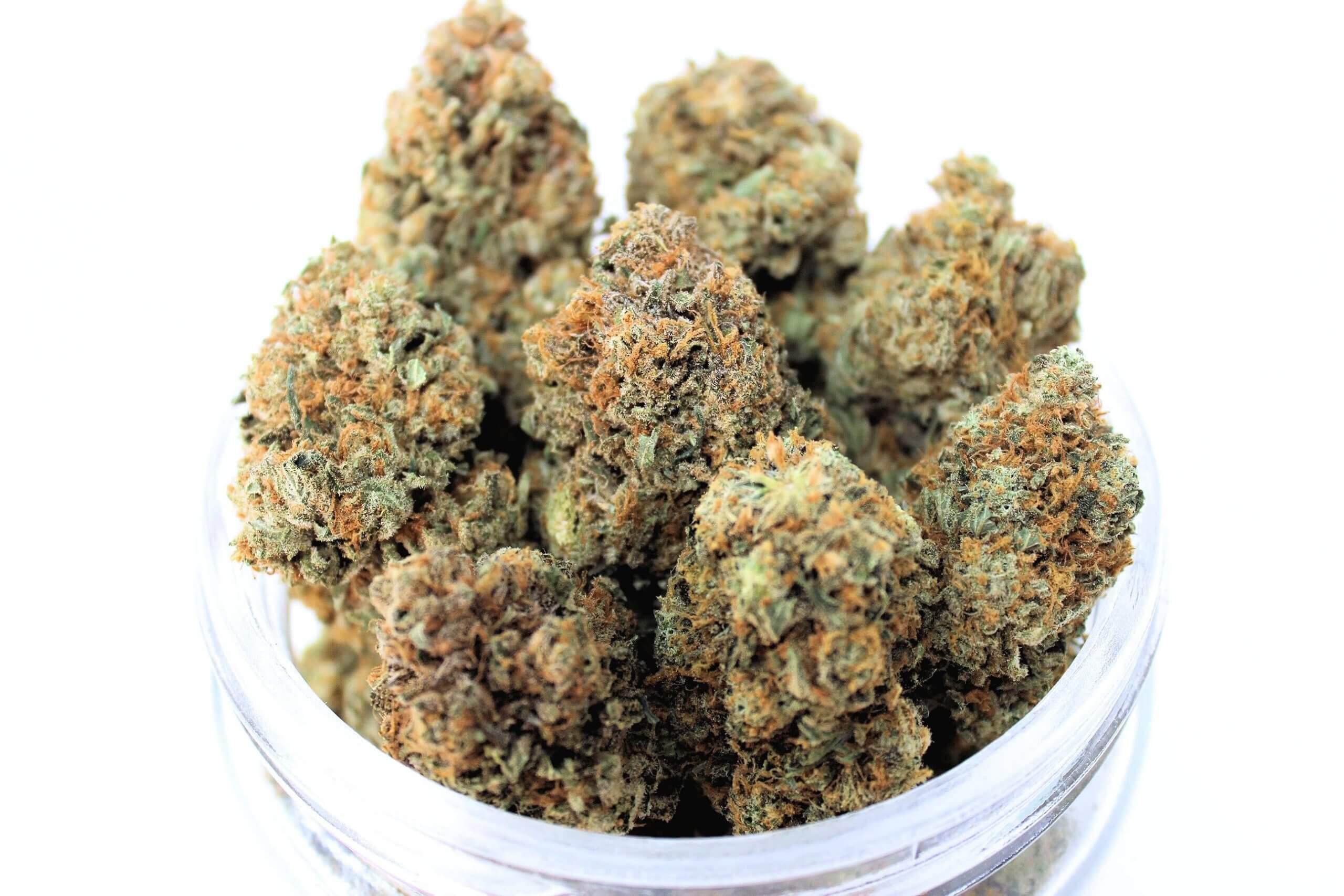 buy weed online manitoba