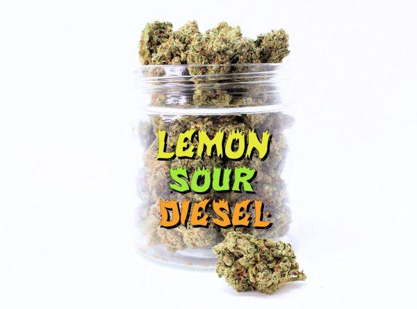 lemonj sour diesel canada