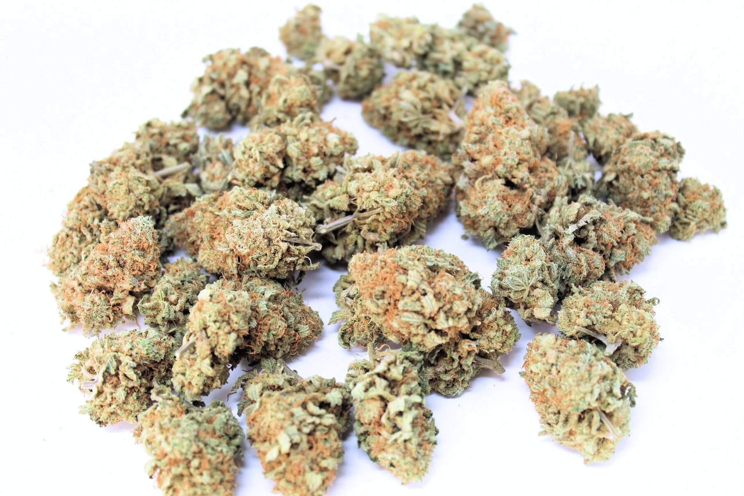 purple bubba for sale