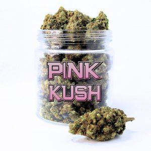 PINK KUSH (AAAA)