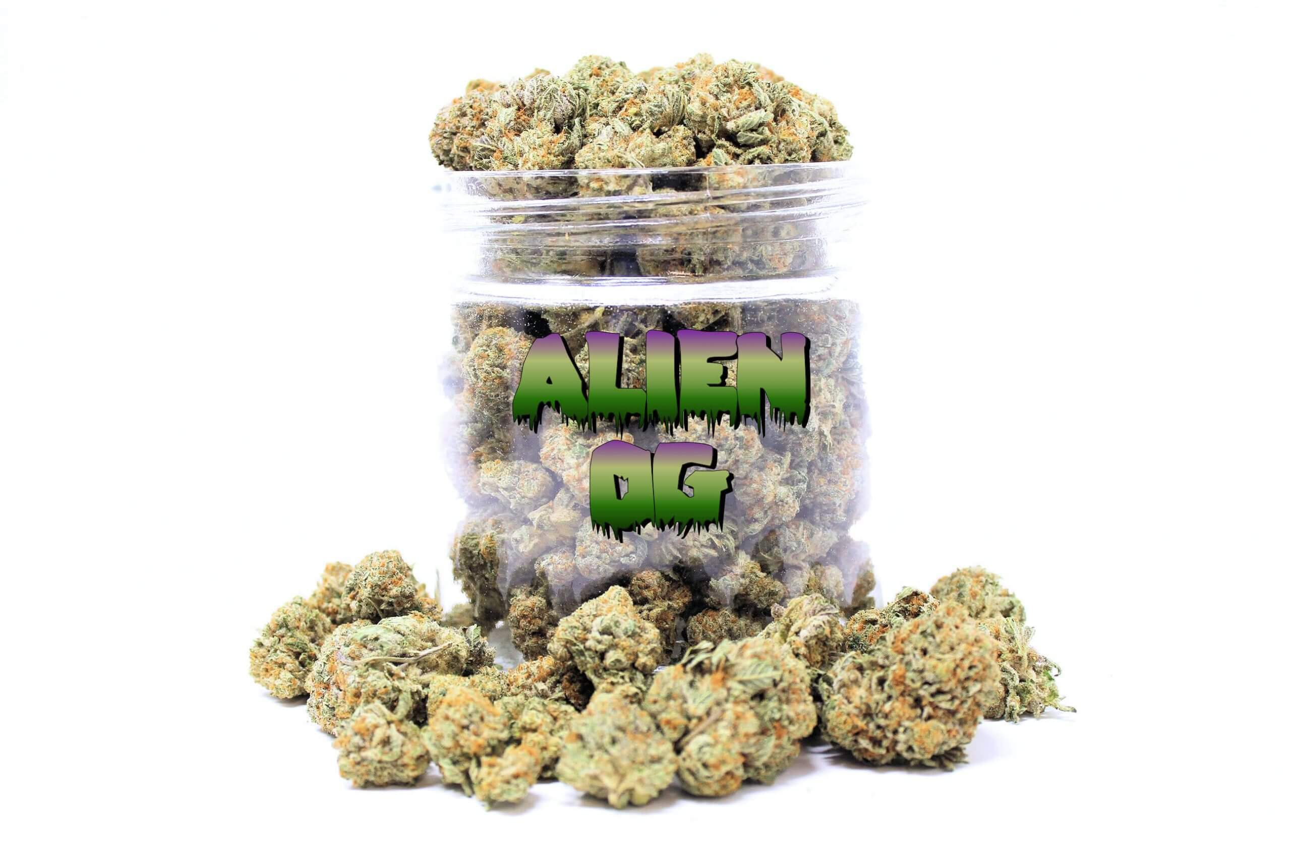 ordering weed online canada