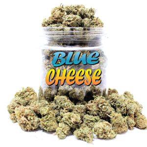 Blue Cheese (A+)
