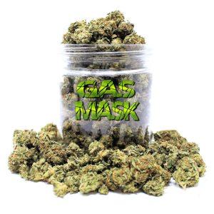 Order Gas Mask strain canada