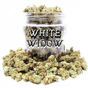 White Widow (AAA)