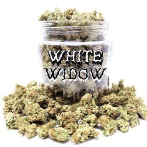 White Widow (AAA)
