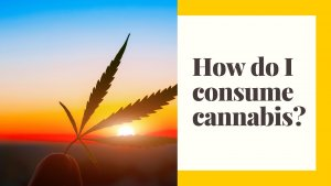 How to consume cannabis