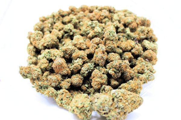CITRUS SKUNK (AAA) strain