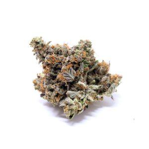 buy Gasleak (AAAA+) weed online