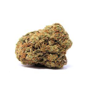 ORANGE CRUSH (AAA) strain