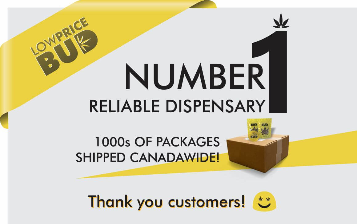 Number 1 Online Cannabis Dispensary Canada