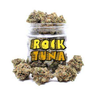 Rock tuna weed for sale