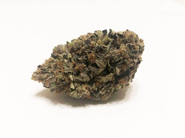 Buy TOM FORD PINK KUSH (AAAA-) LARGE-MEDIUMS online Canada
