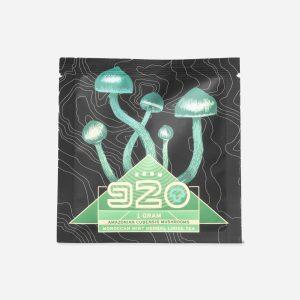 Buy ROOM 920 – Mint Tea online Canada