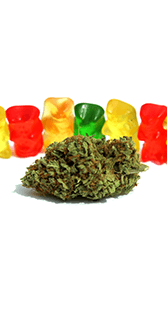 Buy THE GREEN SAMURAI GUMMIES 300MG THC online Canada