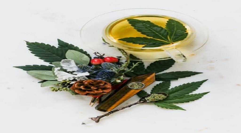 Cannabis Terpenes