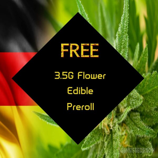 Buy FREE 3.5G FLOWER, FREE EDIBLE, & FREE PRE-ROLL online Canada