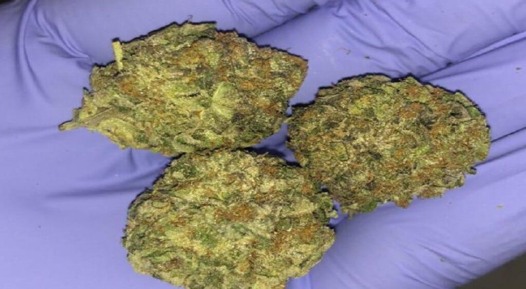 Bubba Kush Weed Starin