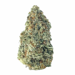 Buy BLACK CHERRY PUNCH (AAAA) online Canada