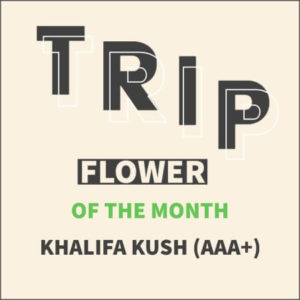 Buy TRIP OF THE MONTH – KHALIFA KUSH (AAA+) online Canada