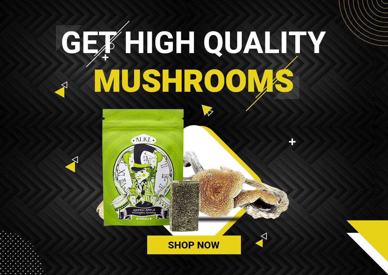 Mail Order Magic Mushroom | Low PRice Bud