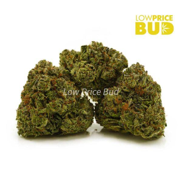 Buy Blueberry Kush (AAAA) online Canada