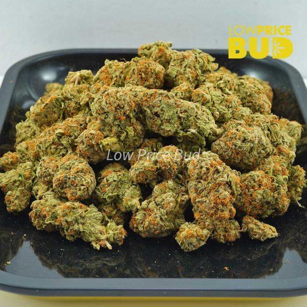 Buy Blue Dream (AA) online Canada