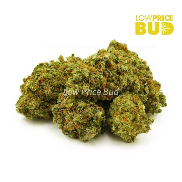 Buy OG Kush (AAA) online Canada