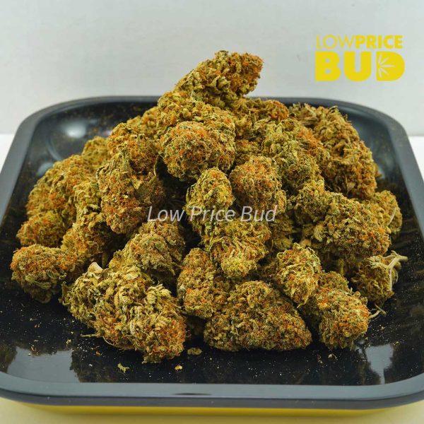 Buy Orange Crush (AA) online Canada