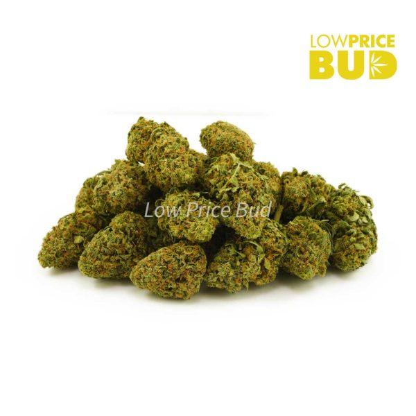 Buy Strawberry Kush (AA) online Canada