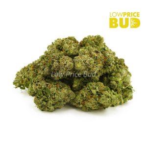 Buy Purple Kush (AAAA) online Canada