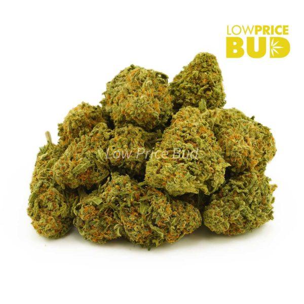 Buy Durban Haze (AA) online Canada