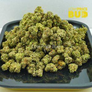 Buy El Jefe (AAAA) – Popcorn Nugs online Canada