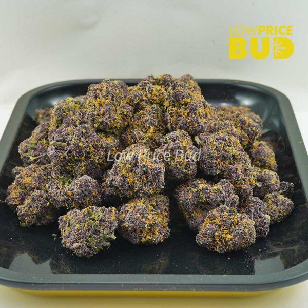 Buy Huckleberry (AAAA) online Canada