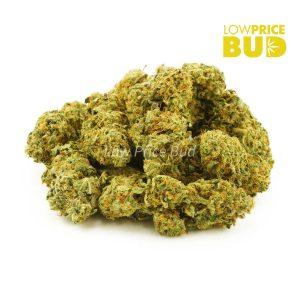 Buy Purple Punch (AA) online Canada