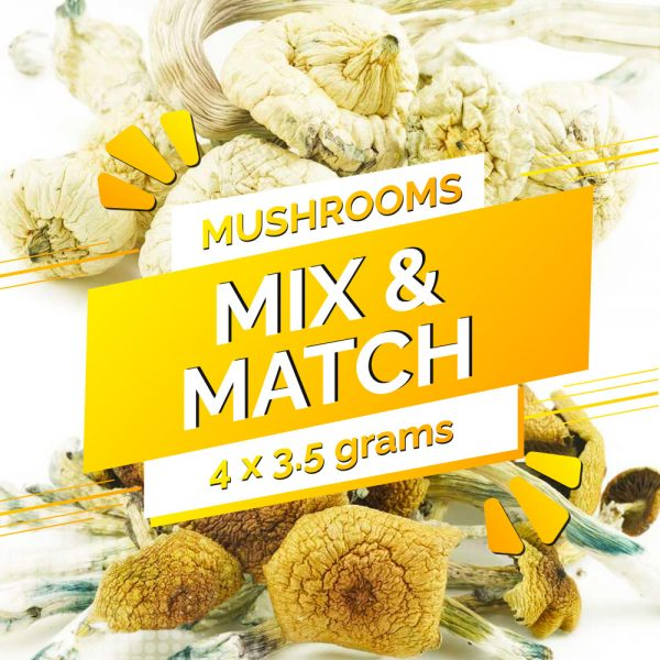 Buy Build Your Own Mushrooms 14g online Canada