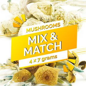 Buy Build Your Own Mushrooms 28g online Canada