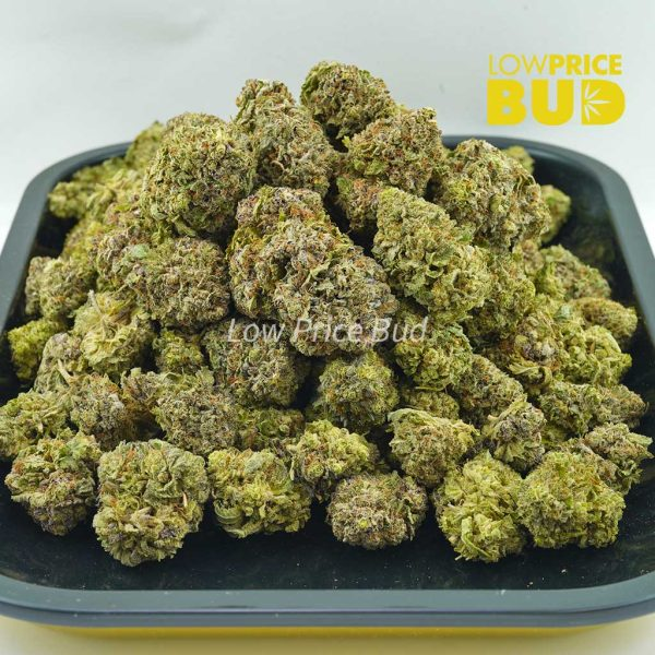 Buy Tropicana Punch (AAA) online Canada