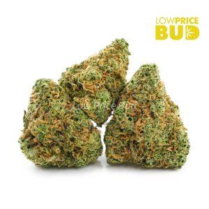 Buy Durban Punch (AAA) online Canada