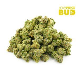 Buy God's Green Crack (AAAA) – Popcorn Nugs online Canada