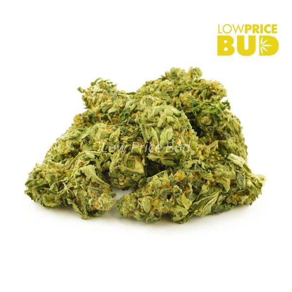 Buy Incredible Hulk (AA) online Canada